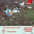 Westpfalz Müll am Straßenrand